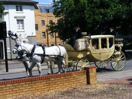 Wedding Carriage by Jack-In-The-Green