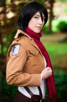 Mikasa - Attack on Titan by stillreflection