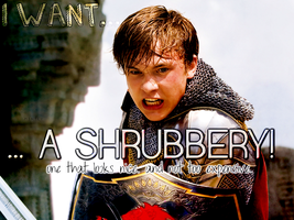 I Want A Shrubbery by Minteey