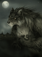 Fan's Werewolf by ZoeStead