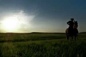 Lonesome Cowboy by IngegnI