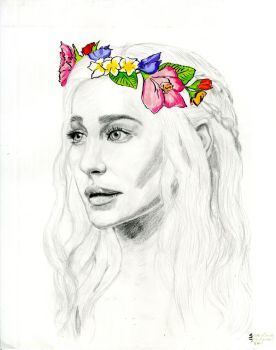 The Beautiful Dany by shakirjsmith