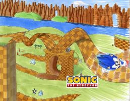 Green Hill Zone: Happy B-Day by QuesoGr7