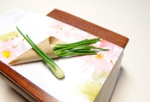 Back from the market- Green onions by Nassae