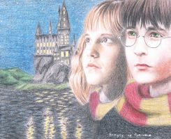 Harry and Hermione by Miiyako