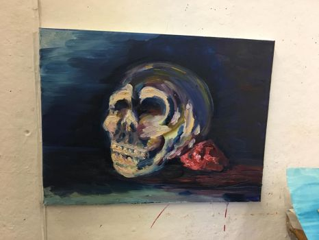 Skull Study by TwinWaters