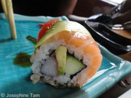 Sushi dissection by TheSpazOutLoud