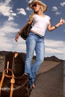 She has Baggage by deviantARTISTRY
