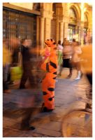 Lost Tigger by salviphoto
