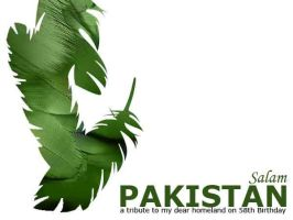 Salam Pakistan by intangibleArt
