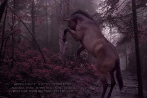 better to have loved and lost by lesliemarie-manips