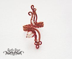 Adjustable wire-wrapped ring by SashaStout