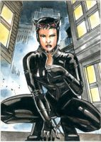 Catwoman sketchcard by Csyeung