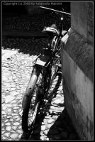 The Bicycle by SiostraWaleta