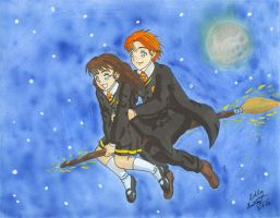 Harry Potter: Broom Ride by Ryoko-and-Yami