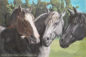 Three Friends by ponyhome