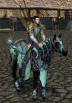 Steed of Rivendell 6 by Aelwir