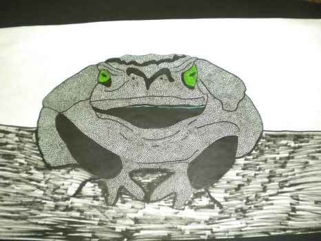 Green-eyed toad by Blackiespots