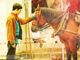 Colin and horse... by MagicalPictureMaker