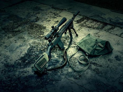 M14 by Profail