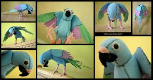 Parrot by MoogleyMog