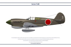 Captured P-40E Japan by WS-Clave