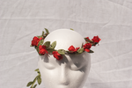 DSC00292 Rose Headdress 3 by wintersmagicstock