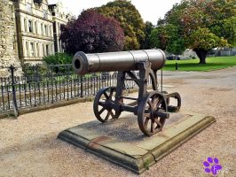 Crimean War Cannon (20.09.13) by LacedShadowDiamond