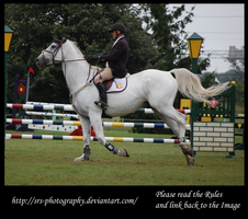 -Show jumping 3- :Stock: by SRS-Photography
