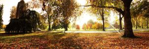 Hyde Park Panorama by XpopsicleX