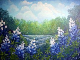 Texas Bluebonnets by carefulwhatyawishfor