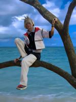 Roxas visits Destiny Islands by rawien