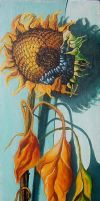 SUNflower by angel-biljana
