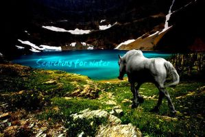 Searching For Water by Extince
