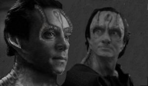 Bashir as Cardassian 2 by pixellle