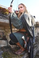 Eamanae, an Elven Warrior - H42 by Barrowing