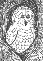 Owl/10/12 by TemBrook