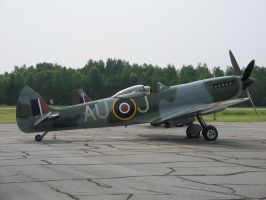 Spitfire by cam-stock