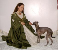 Italian Gown with Greyhound 8 by akirastock