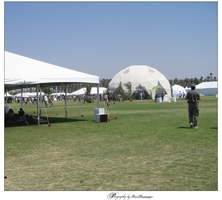 coachella crowd + exhibits2 by nitrate