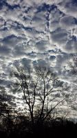 Skies Over Grapevine 3 by Aldistar
