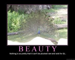 Beauty Demotivational Poster by PippinRocks
