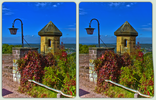 Watch Tower of the Wartburg 3-D / Germany by zour