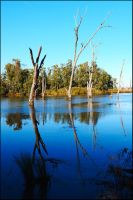 Lake Mulwala reflections by wildplaces