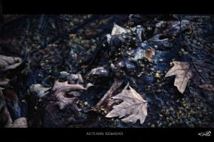 autumn remains by archonGX