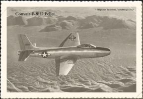 Convair F-81D Pellet by Bispro