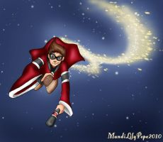 Wisconsin Badger Quidditch by MandiPope