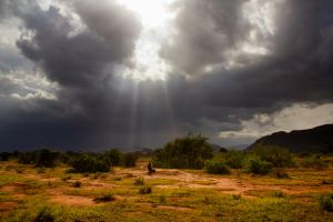 After the rain in the savanna by DeviantTeddine