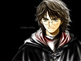 Harry: GoF by yukipon