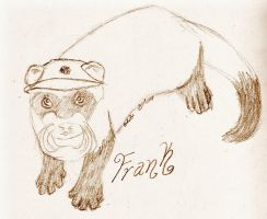 Frank the ferret by Kira-Kat